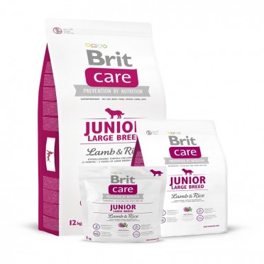 Brit Care Junior Large Breed Lamb&Rice 12kg 132703