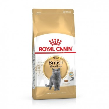 Royal Canin Feline British Shorthair