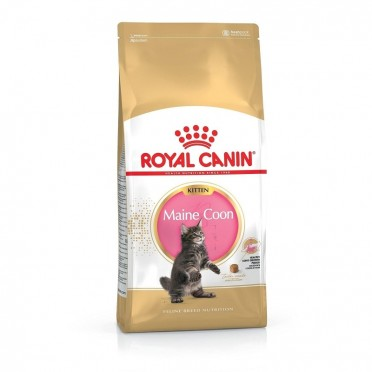 Royal Canin Feline Maine Coon Kitten
