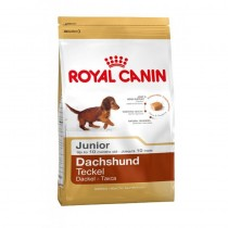 Royal Canin Breed Dachshund Junior dla jamników 1,5kg 189410